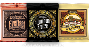 Ernie Ball Phospher Bronze Medium